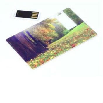 флешка-кредитка Card3 - мини-флешка вынимается из пластиковой карты