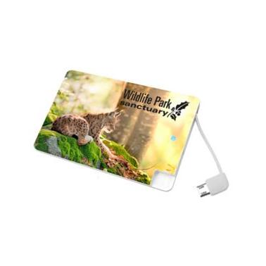 Main photo of Универсальное зарядное устройство Credit Card1 Power Bank